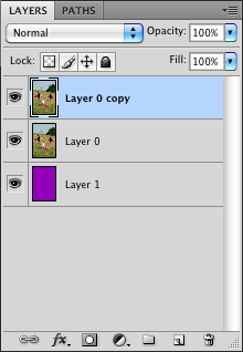 Photoshop Copy Layer