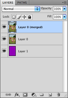 Merge Layer